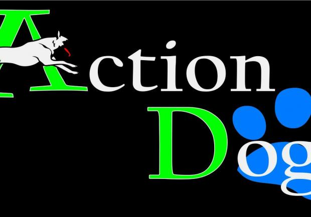 Action Dog photos