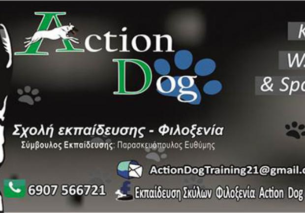 Action Dog files
